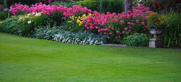 About Us | Safety Lawn Care