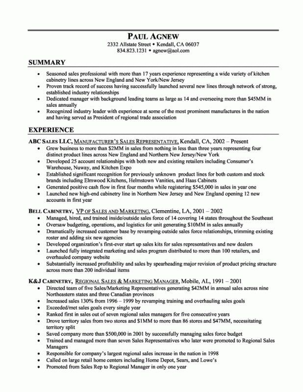 Examples Of A Summary For A Resume | Samples Of Resumes