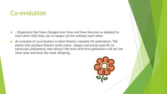 Co evolution and symbiosis powerpoint for biology