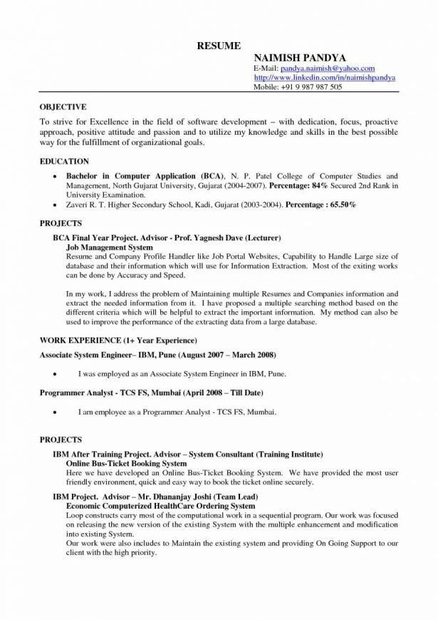 Resume : Software Programmer Cv How To List Self Employment On A ...