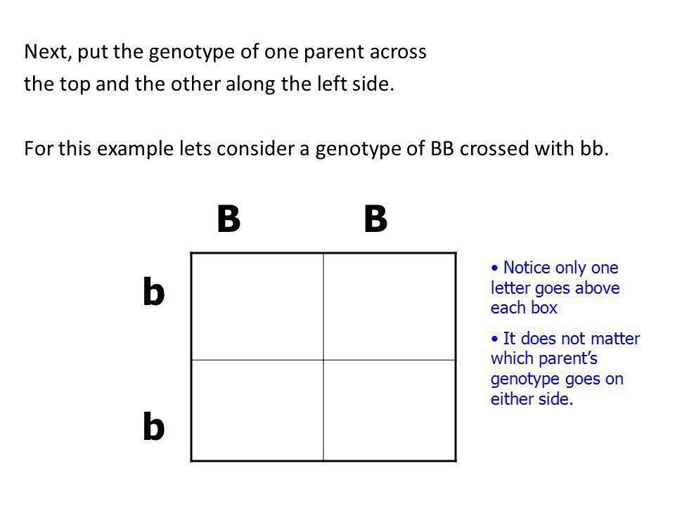 Genetics. Genetics is… the scientific study of heredity (traits ...