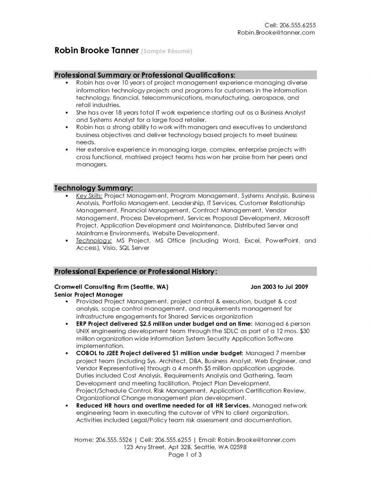 Resume Summary Samples For It Professionals | Resume Template Free