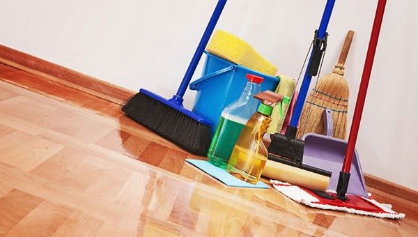 British cleaning company offered services nudistok-cleaners | CypLIVE