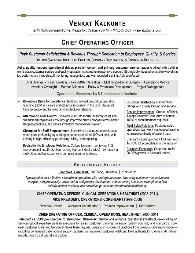 executive resume samples 15 resume sample 12 technology executive ...