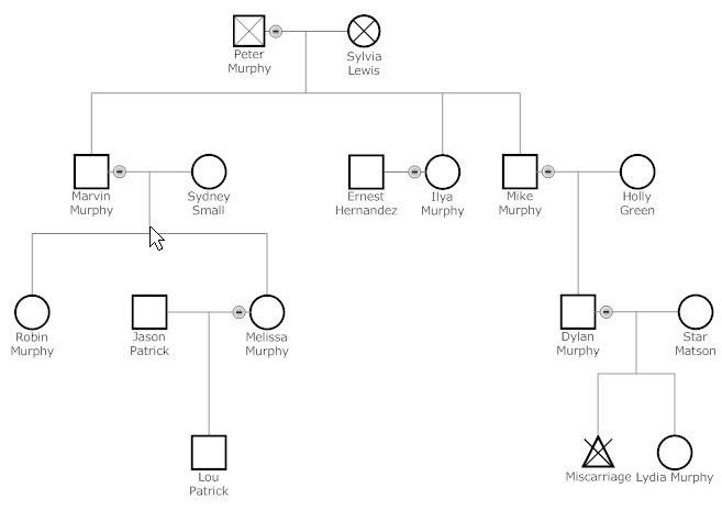 Genogram - Learn Everything About Genograms