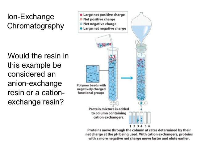 Ion Exchange Chromatography Lecture