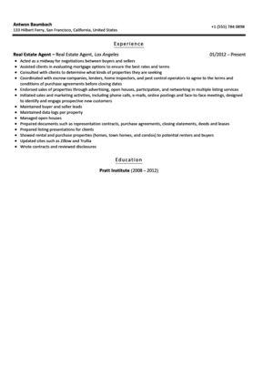 Real Estate Agent Resume Sample | Velvet Jobs