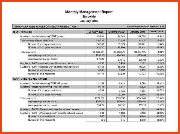 Monthly Management Report Template. Monthly Activity Report ...