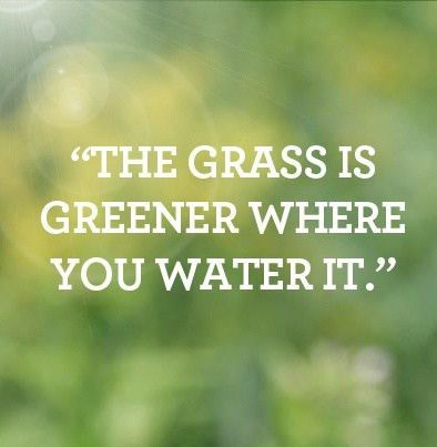 12 best Lawn Care Sayings images on Pinterest | The grass, Water ...