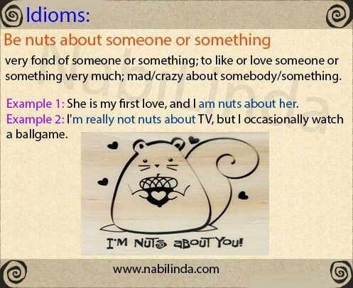 496 best Idioms & common expressions images on Pinterest | English ...