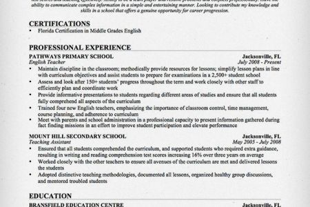 Resume Addendum Template, Resume Professional Experience, Supply ...