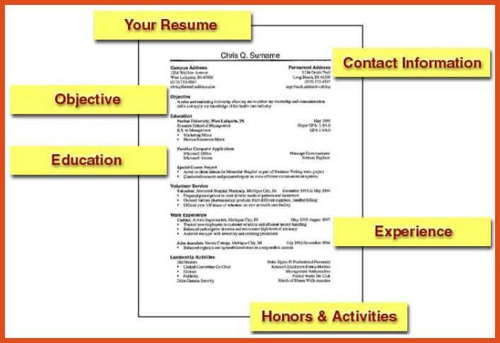 job resumes format   moa format