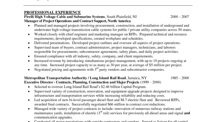 program manager resume summary resume template for project manager ...