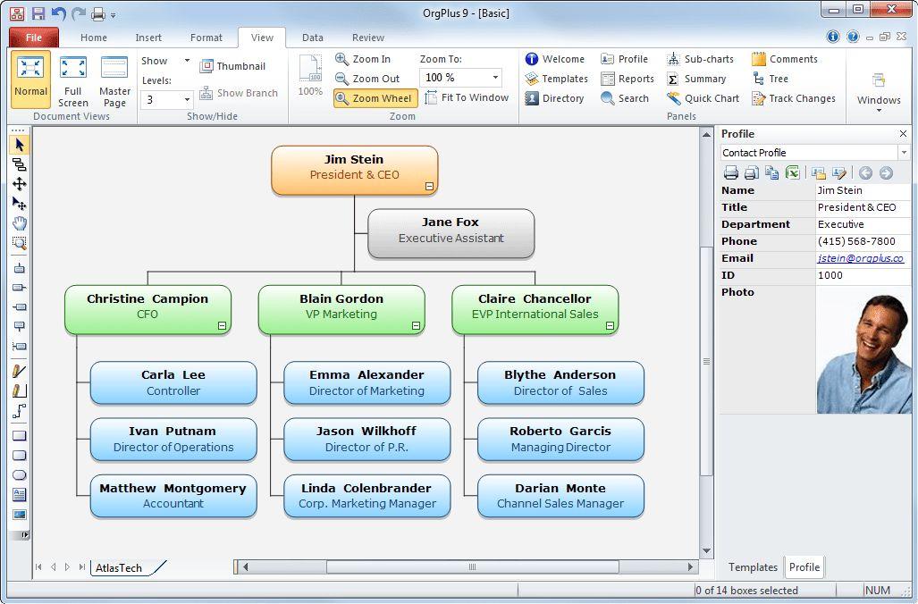 Organization Chart Template | tristarhomecareinc