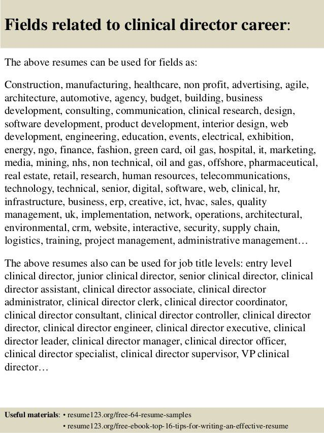 clinical auditor resume sales auditor lewesmr internal resume ...