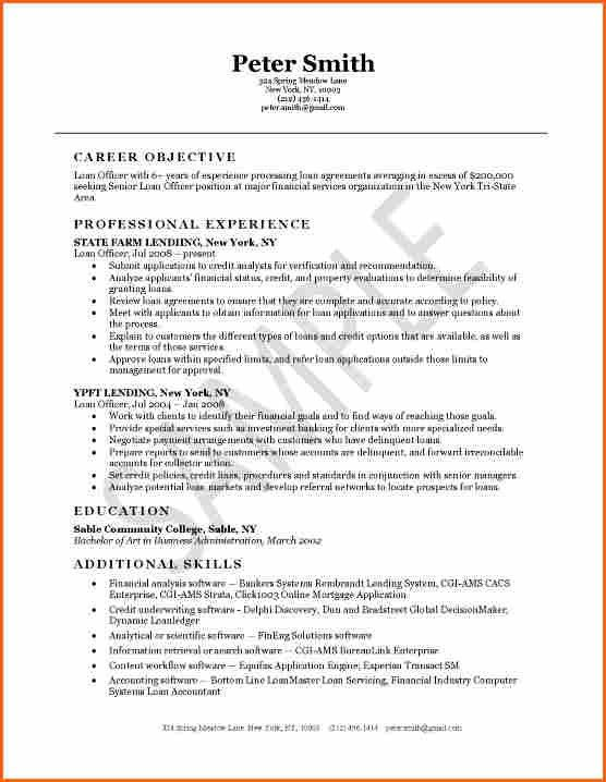 6+ resume summary examples for collector - Budget Template Letter