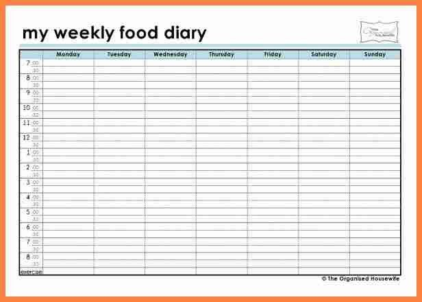 4+ weekly food journal | Invoice Example 2017
