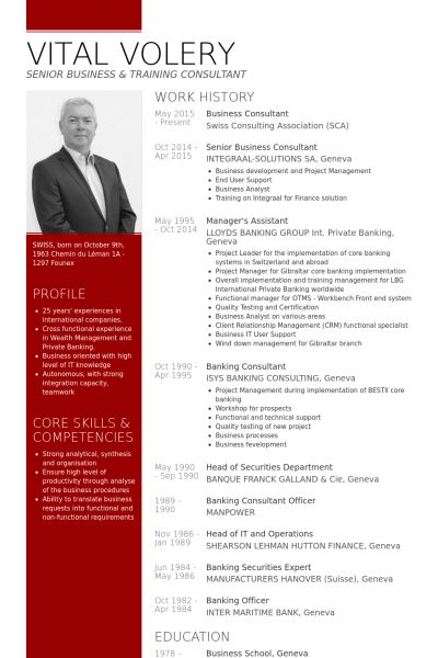 Download Business Consultant Resume Sample | haadyaooverbayresort.com