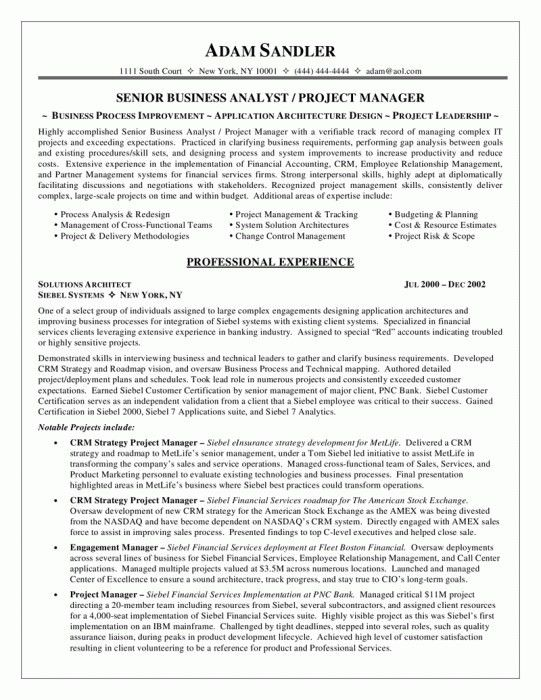 Brilliant Business Analyst Resume Objective | Resume Format Web