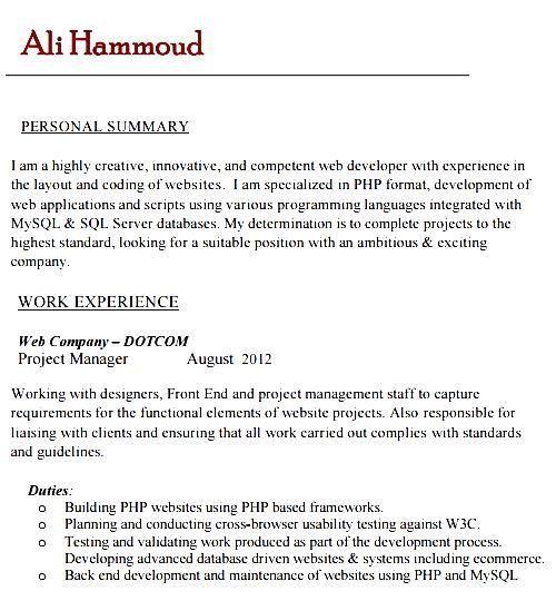 Sample Php Developer Resume. Trendy Design Ideas Net Developer ...