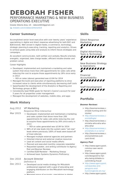 Vp Marketing Resume samples - VisualCV resume samples database
