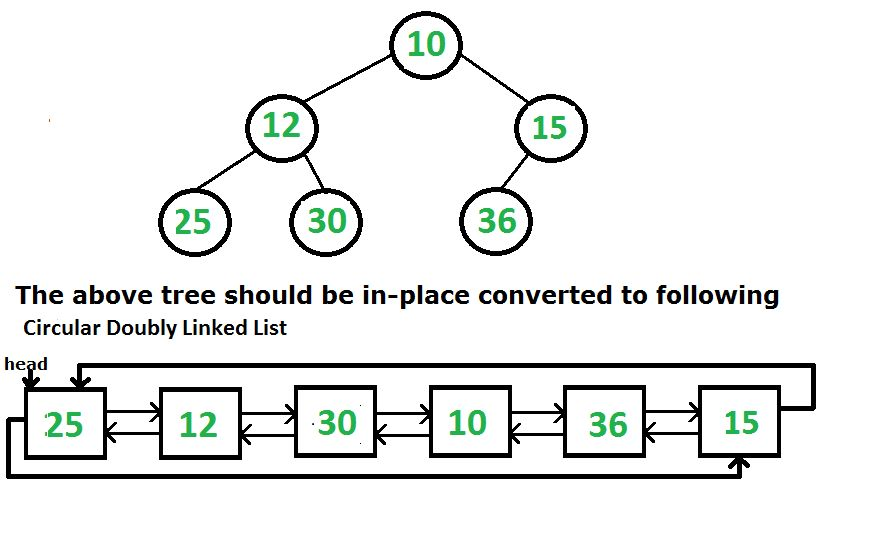 Convert a Binary Tree to a Circular Doubly Link List - GeeksforGeeks