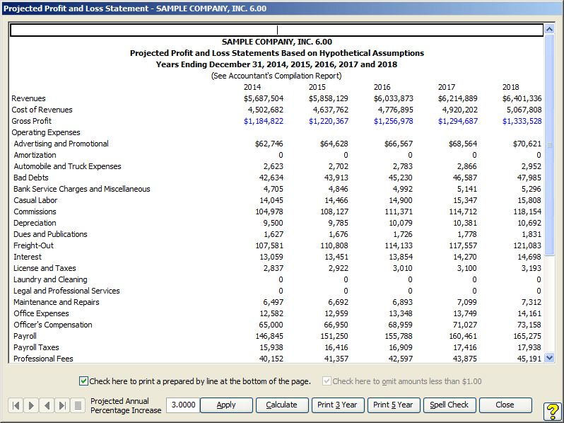 Projected Profit and Loss Statement Screen Shot