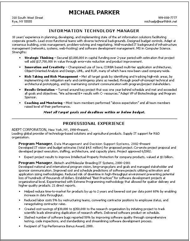 Information Technology Manager Resume - Template Examples