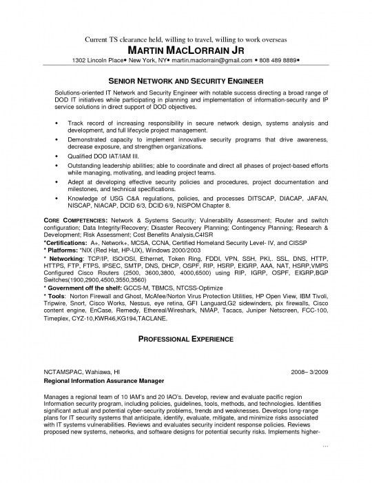 download cyber security resume haadyaooverbayresortcom best it