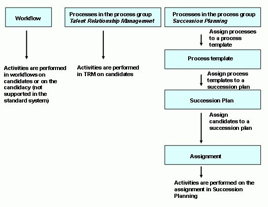 SAP Library - Cross Processes (Succession Planning)