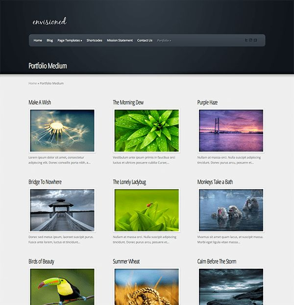 Easily Create A Video Gallery Using WordPress Plugins | Elegant ...