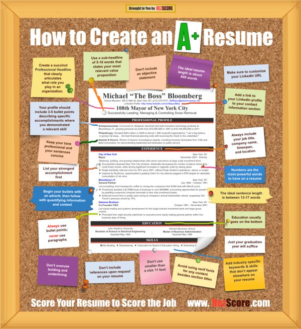 make online resume breakupus scenic how to write a great resume ...