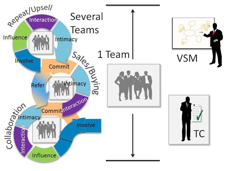 Lean Marketing, the Team Coordinator