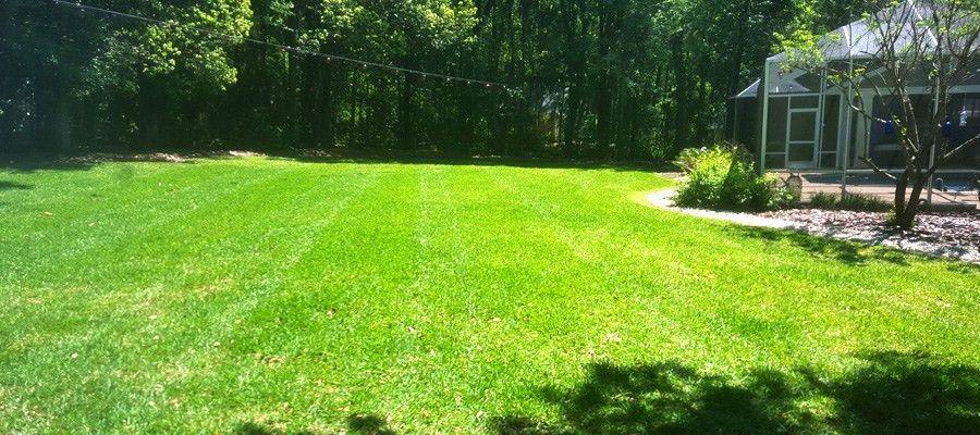 Lawn Maintenance in Gainesville, FL