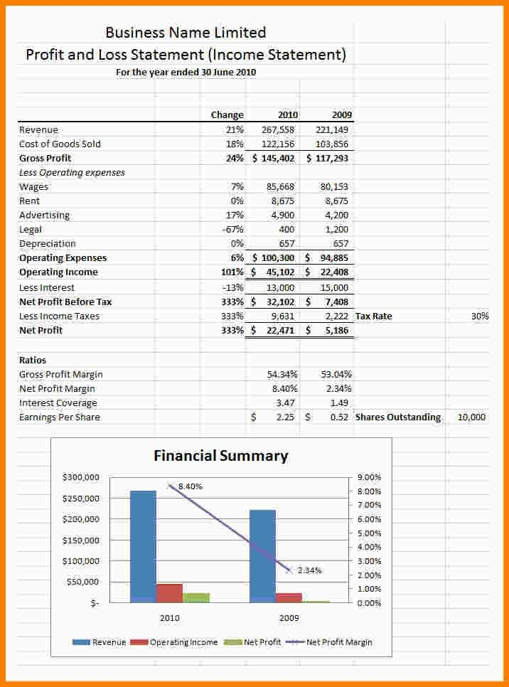 6+ profit loss statement template | Statement Information