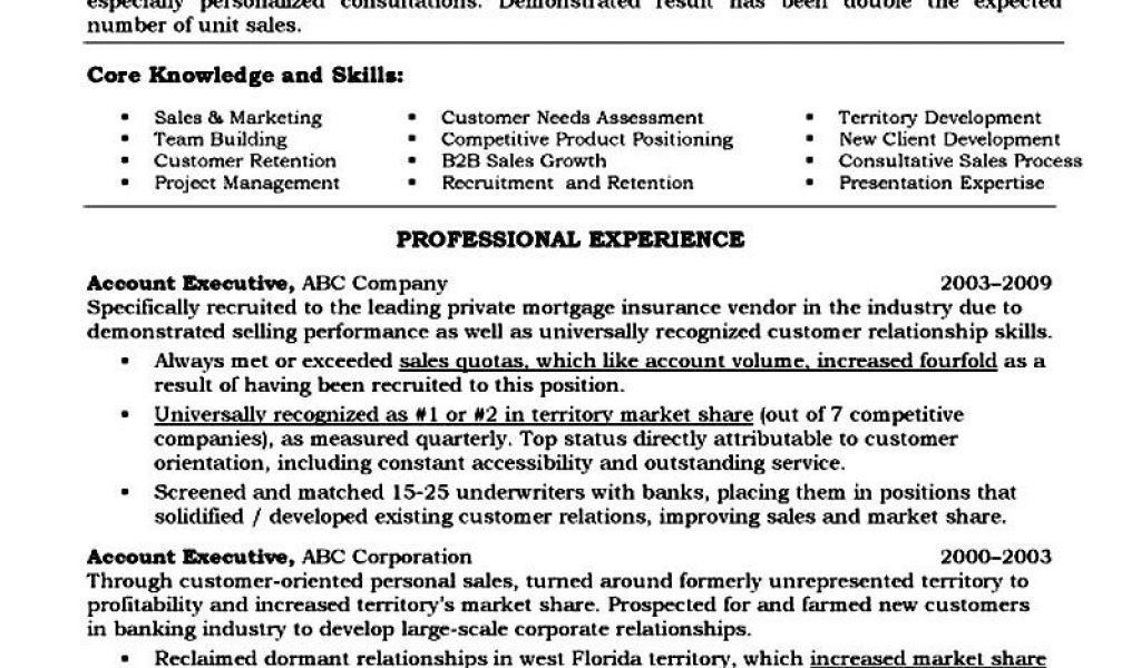account manager cv template. territory sales account manager ...