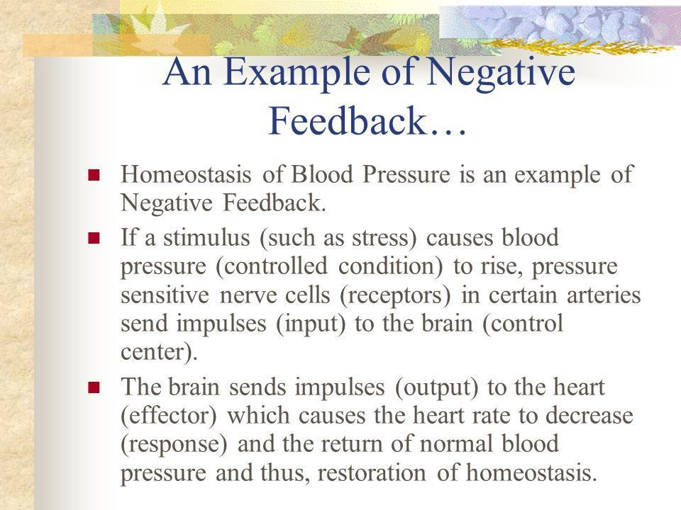 Feedback Systems In The Body - ppt video online download