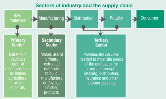 Sectors of industry and sustainable supply chains - Developing a ...