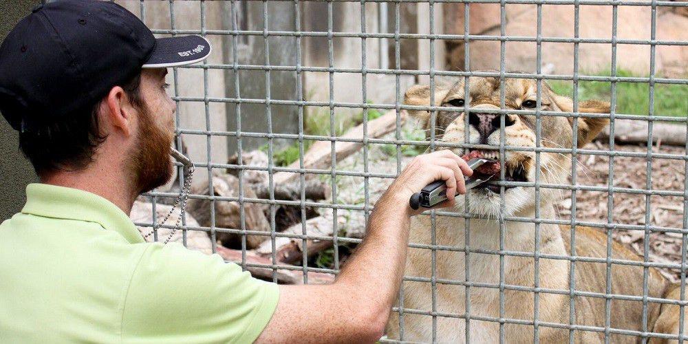 Spotlight on Animal Science Careers | UC Davis Department of ...