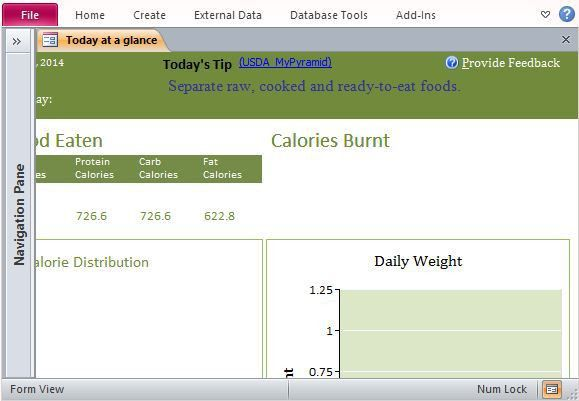 Desktop Nutrition Tracking Database Template For Access 2013