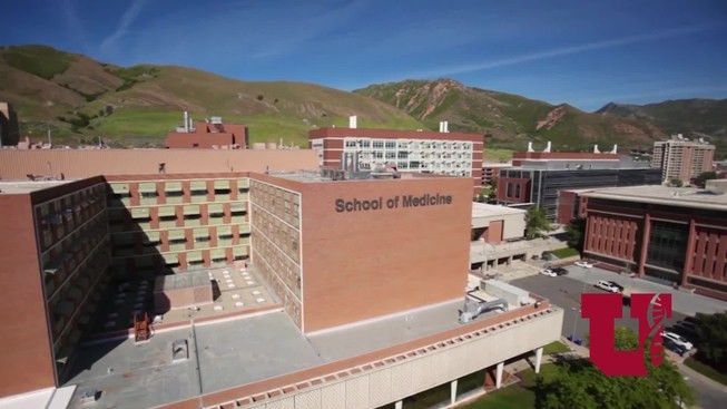 Department of Anesthesiology - | University of Utah