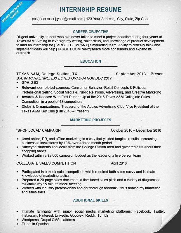 17 Best Internship Resume Templates to Download for Free - WiseStep