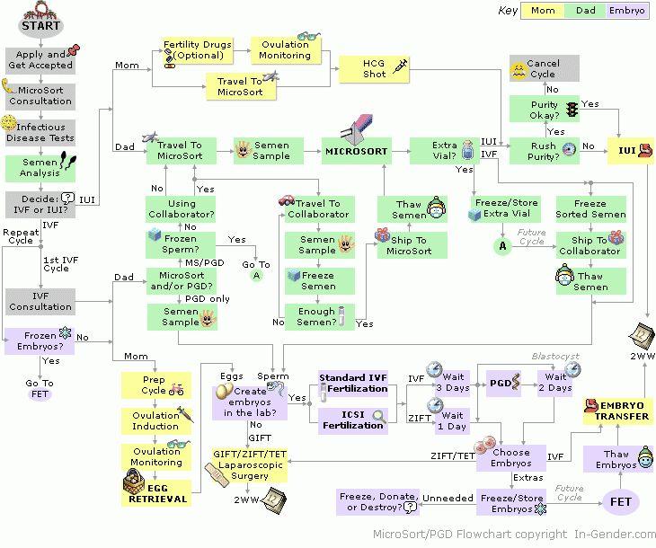 MicroSort/PGD Flowchart : Ingender.com