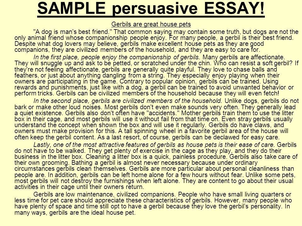 What is a Persuasive Essay? - Obfuscata