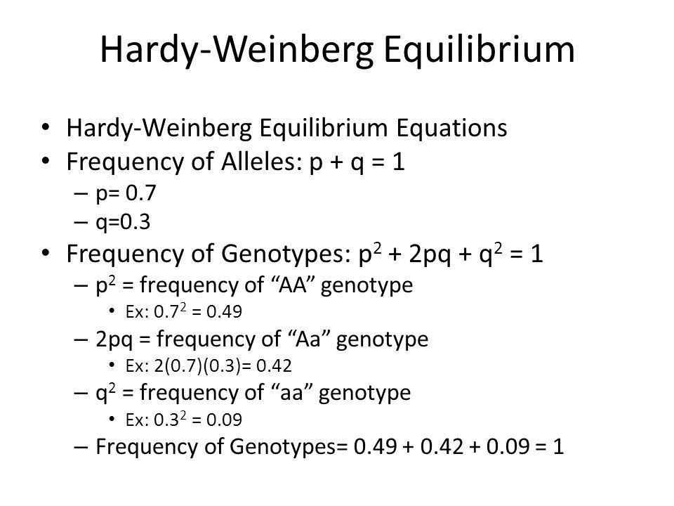 Hardy Weinberg Equilibrium Equation Examples - Jennarocca