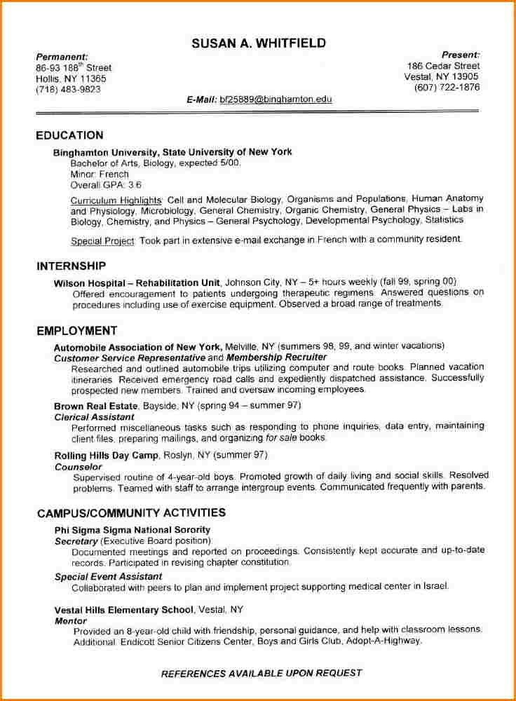 Best Resumes Examples Ideas