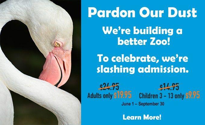 Phoenix Wildlife Zoo Careers - Best Zoo 2017