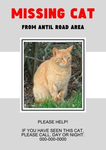 Missing Pet poster template, How to create a Missing Pet poster...