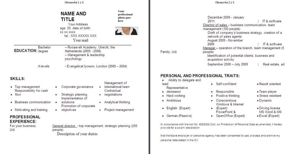 teller resume objective teller resume objective sample teller
