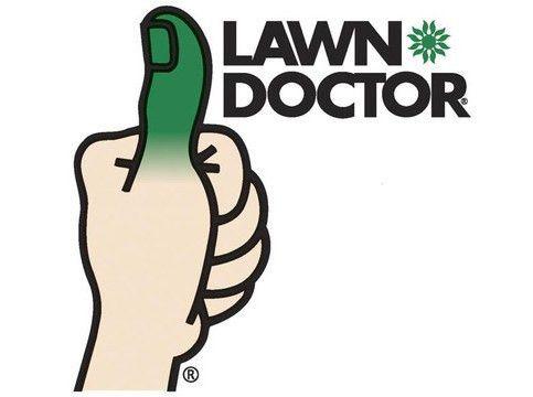 Compare the Best Lawn Care Companies | ConsumerAffairs